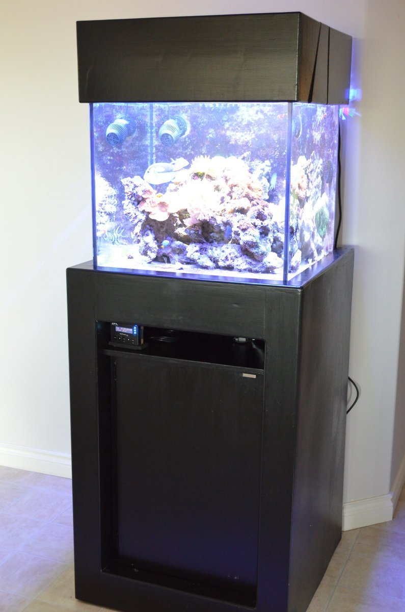 Fish tank tv stand - 50 Gallon Cube Stand With Electronics Shelf Above The Sump 50 Gallon Cube Stand With Electronics Shelf Above The Sump